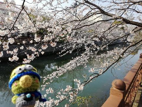 Amifumu_e174