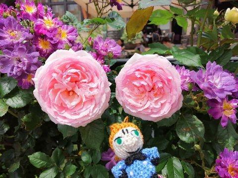 Amifumu_e328