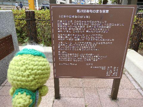 Amifumu_b061