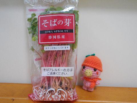 Amifumu_c571