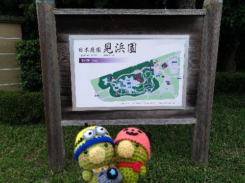 Amifumu_d534