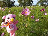 Amifumu_b952