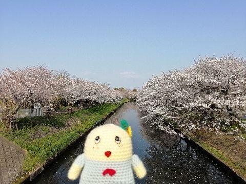 Amifumu_e173