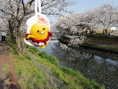 Amifumu_e179