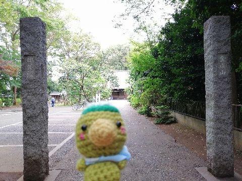 Amifumu_e636