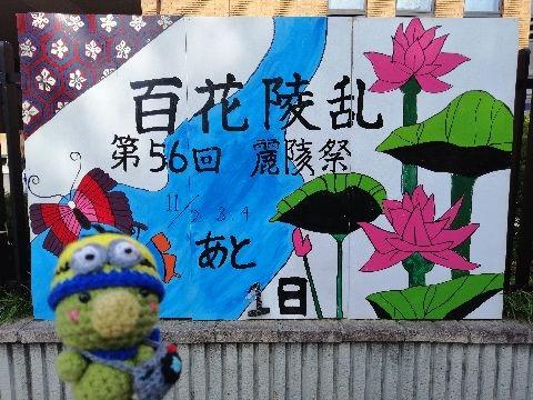Amifumu_e731