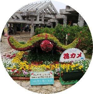 Amifumu_e859