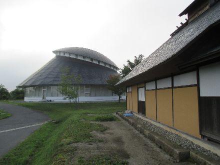 Amifumu595