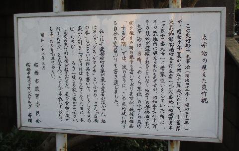 Amifumu809