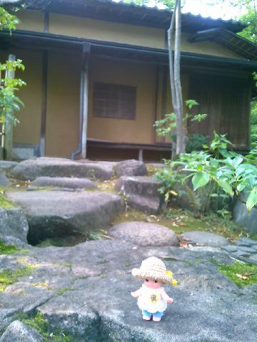 Amifumu833