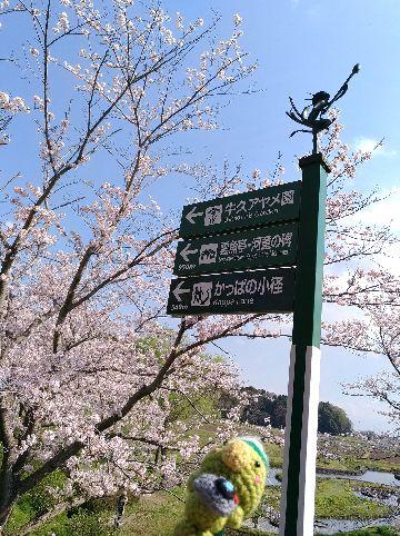 Amifumu_b034