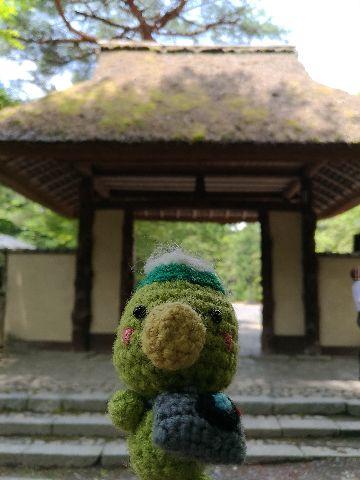 Amifumu_b365