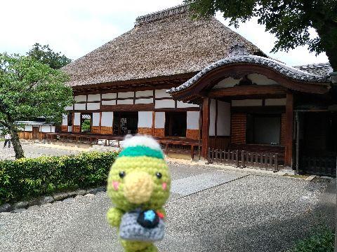 Amifumu_b684