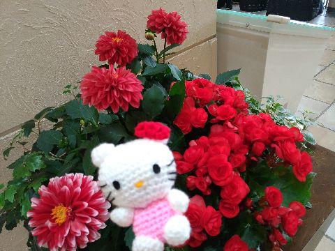 Amifumu_b941_2