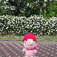 Amifumu_c903