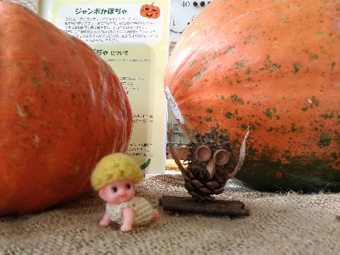 Amifumu_d641